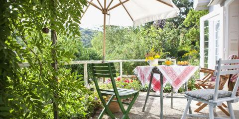 10 piante da esterno e tipi di fiori resistenti al freddo for Arredo terrazza giardino offerte